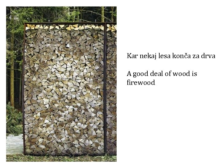 Kar nekaj lesa konča za drva A good deal of wood is firewood