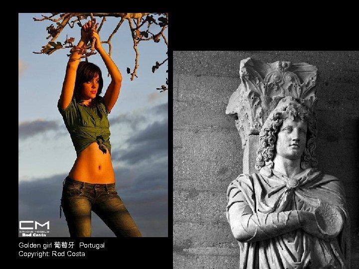Golden girl 葡萄牙 Portugal Copyright: Rod Costa 61