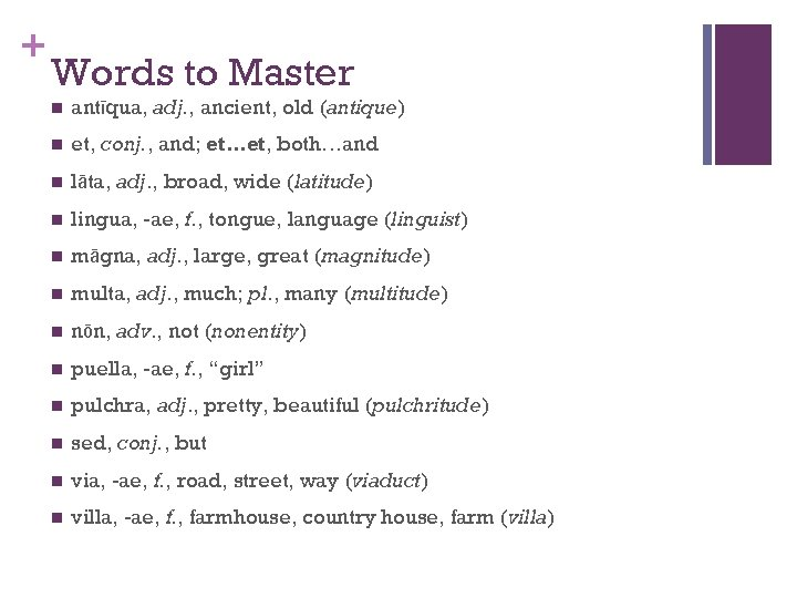 + Words to Master n antīqua, adj. , ancient, old (antique) n et, conj.