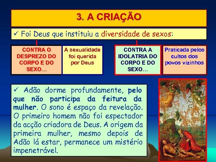 3. A CRIAÇÃO Foi Deus que instituiu a diversidade de sexos: CONTRA O DESPREZO