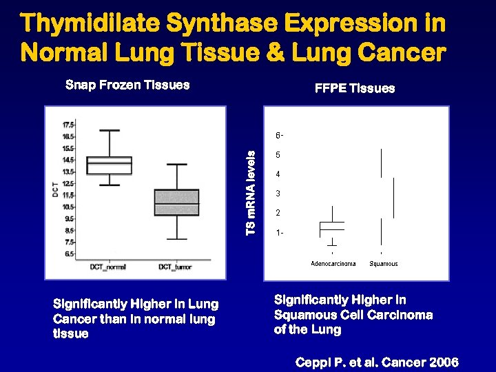Thymidilate Synthase Expression in Normal Lung Tissue & Lung Cancer Snap Frozen Tissues TS