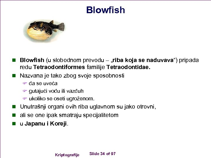 "Blowfish n Blowfish (u slobodnom prevodu – ""riba koja se naduvava"") pripada redu Tetraodontiformes"