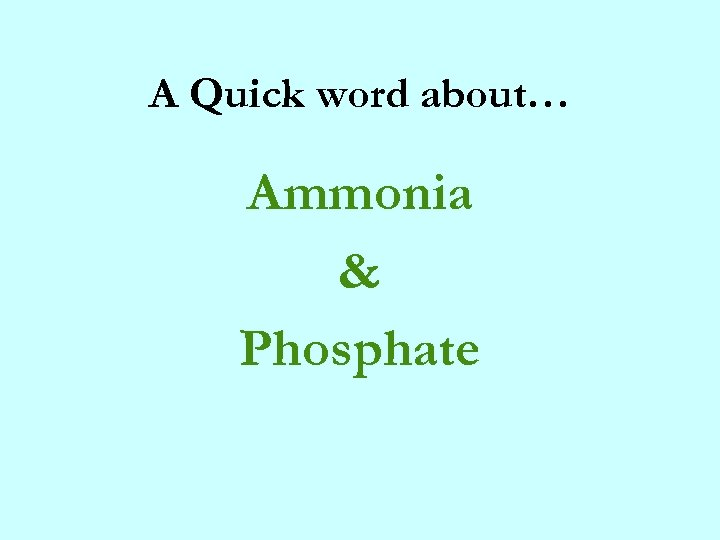 A Quick word about… Ammonia & Phosphate