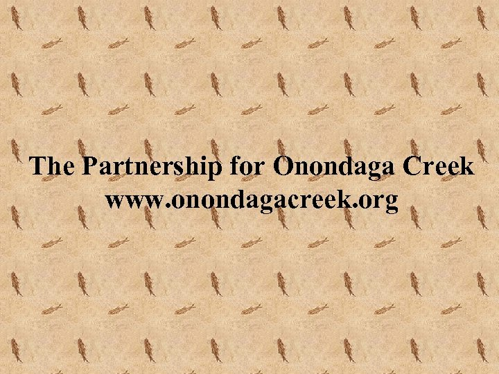 The Partnership for Onondaga Creek www. onondagacreek. org