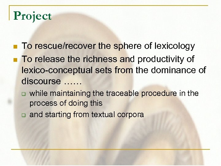 Project n n To rescue/recover the sphere of lexicology To release the richness and