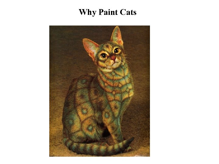 Why Paint Cats