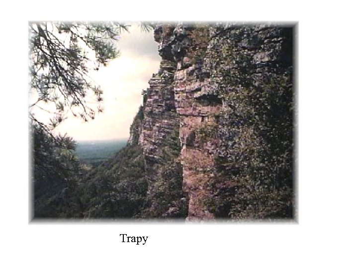 Trapy
