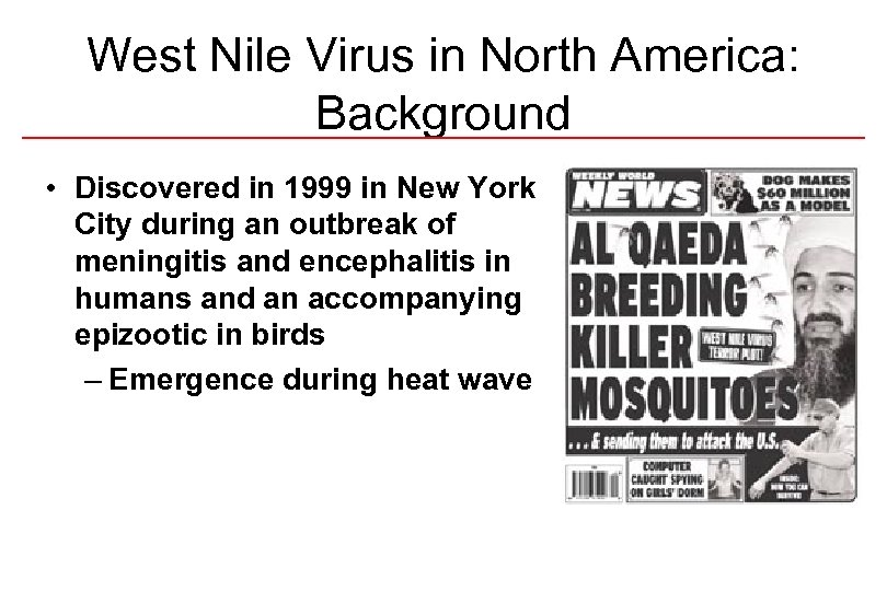 West Nile Virus in North America: Background • Discovered in 1999 in New York