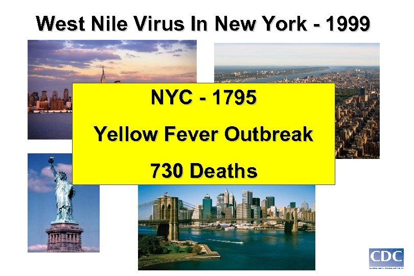 West Nile Virus In New York - 1999 NYC - 1795 Yellow Fever Outbreak