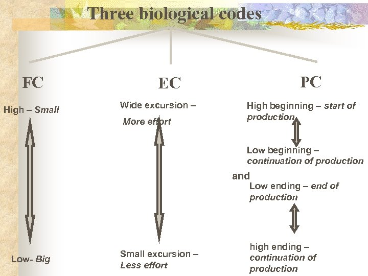 Three biological codes FC High – Small PC EC Wide excursion – More effort