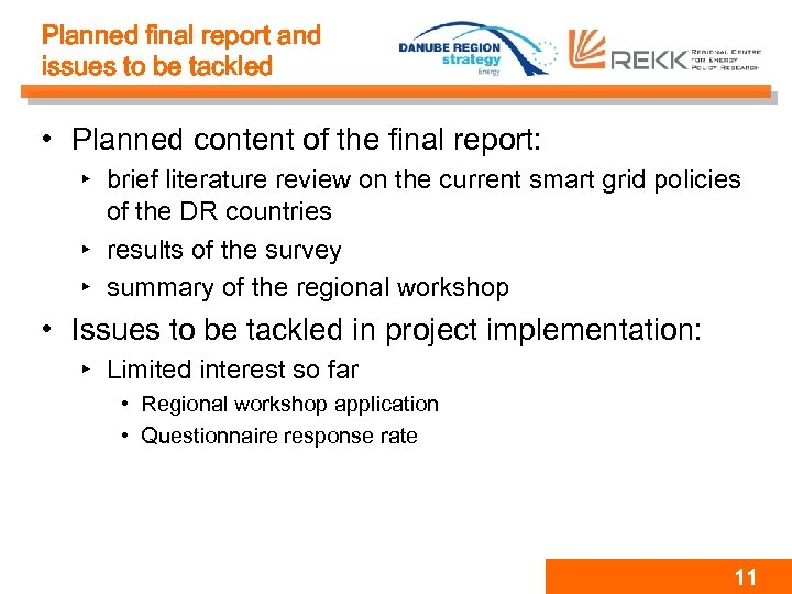 Planned final report and issues to be tackled • Planned content of the final
