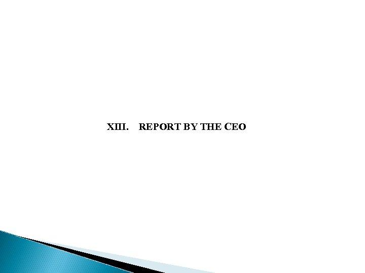 XIII. REPORT BY THE CEO