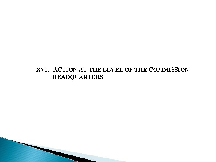 XVI. ACTION AT THE LEVEL OF THE COMMISSION HEADQUARTERS