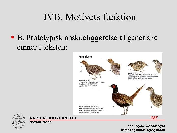 IVB. Motivets funktion B. Prototypisk anskueliggørelse af generiske emner i teksten: AARHUS UNIVERSITET Nordisk