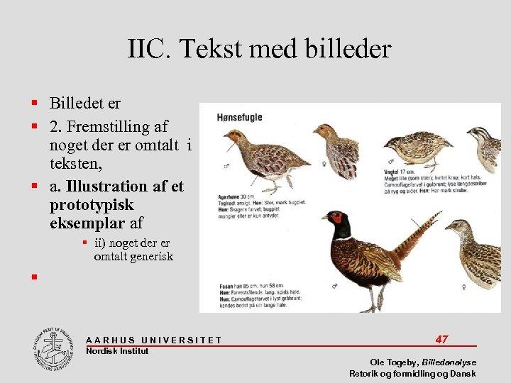 IIC. Tekst med billeder Billedet er 2. Fremstilling af noget der er omtalt i