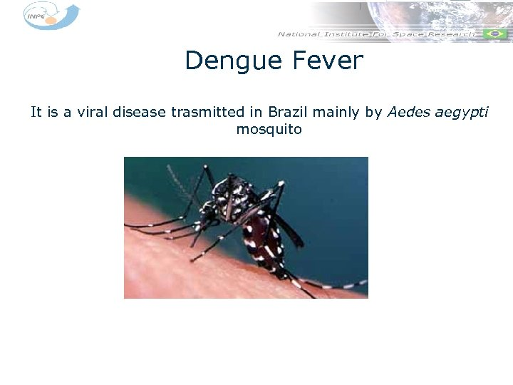 Dengue Fever It is a viral disease trasmitted in Brazil mainly by Aedes aegypti