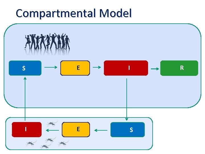 Compartmental Model E I R