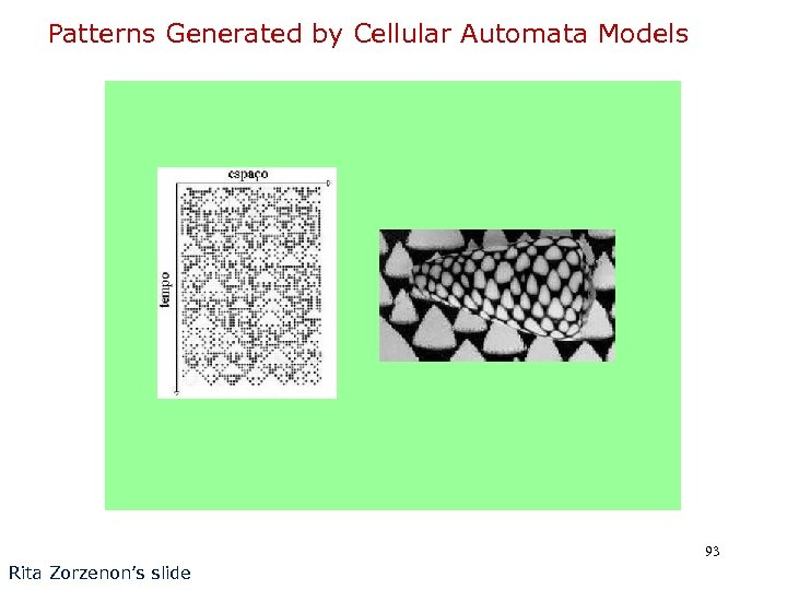 Patterns Generated by Cellular Automata Models 93 Rita Zorzenon's slide