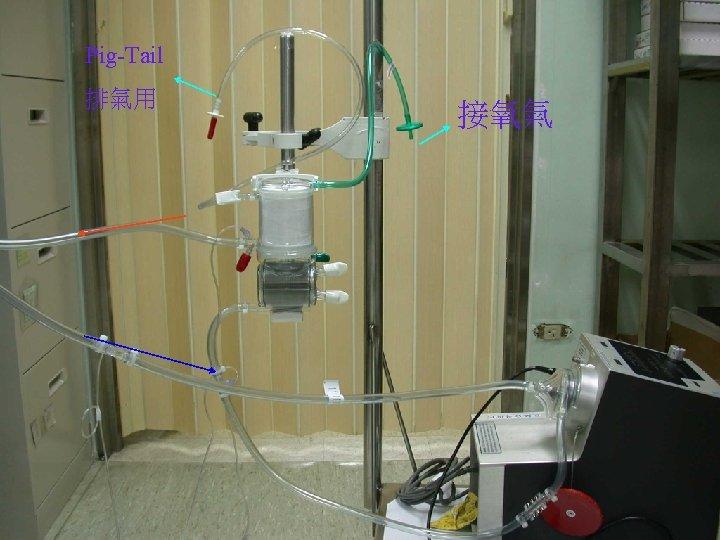 Pig-Tail 排氣用 接氧氣