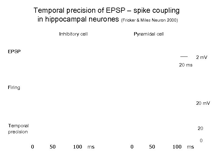 Temporal precision of EPSP – spike coupling in hippocampal neurones (Fricker & Miles Neuron