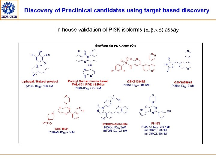 Discovery of Preclinical candidates using target based discovery IIIM-CSIR In house validation of PI