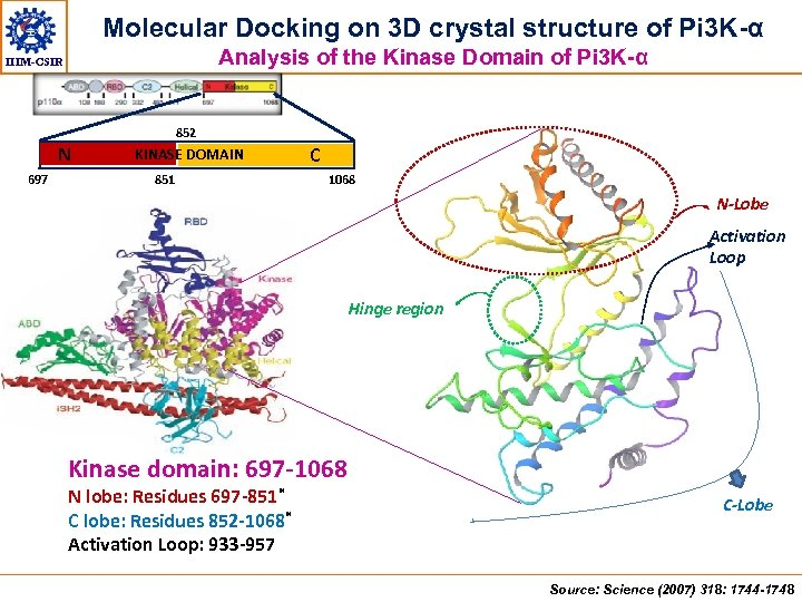 Molecular Docking on 3 D crystal structure of Pi 3 K-α Analysis of the