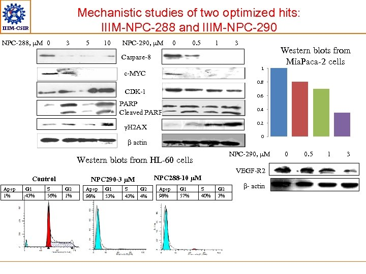 Mechanistic studies of two optimized hits: IIIM-NPC-288 and IIIM-NPC-290 IIIM-CSIR NPC-288, µM 0 3
