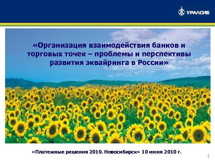 «Организация взаимодействия банков и торговых точек – проблемы и перспективы развития эквайринга в
