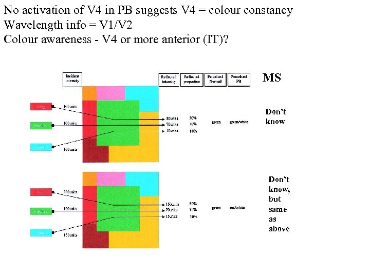 No activation of V 4 in PB suggests V 4 = colour constancy Wavelength