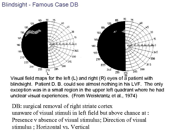 Blindsight - Famous Case DB Visual field maps for the left (L) and right