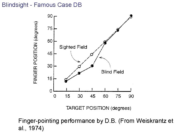Blindsight - Famous Case DB Finger-pointing performance by D. B. (From Weiskrantz et al.