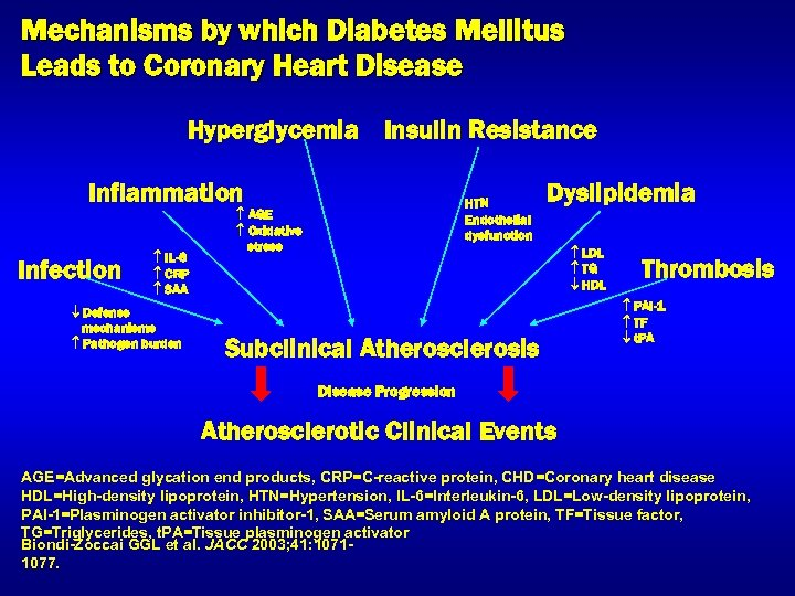Mechanisms by which Diabetes Mellitus Leads to Coronary Heart Disease Hyperglycemia Insulin Resistance Inflammation