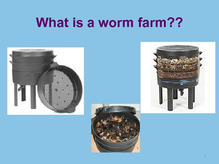What is a worm farm? ? 2