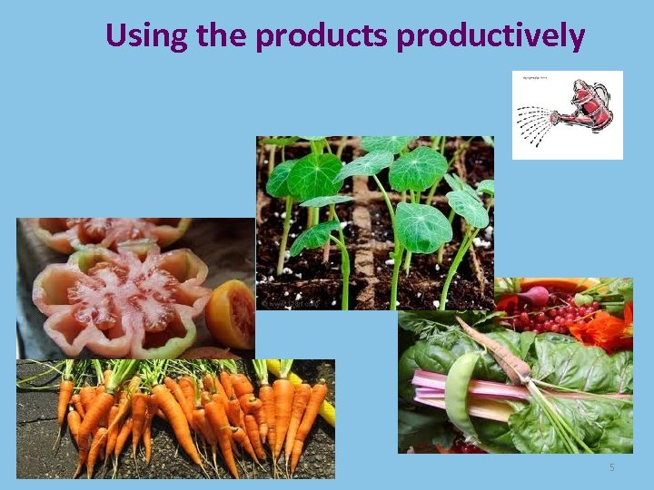 Using the products productively 5