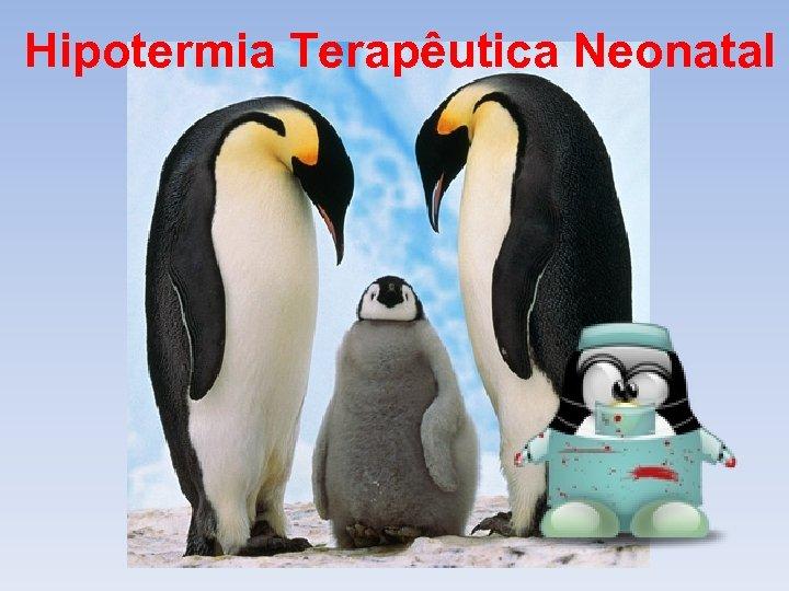 Hipotermia Terapêutica Neonatal