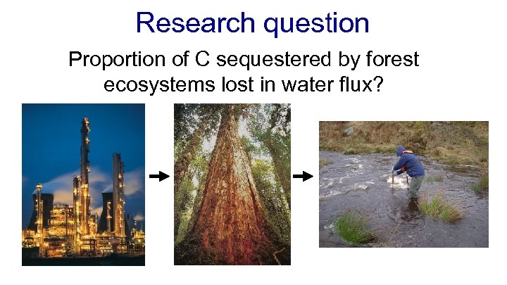 Research question Proportion of C sequestered by forest ecosystems lost in water flux?