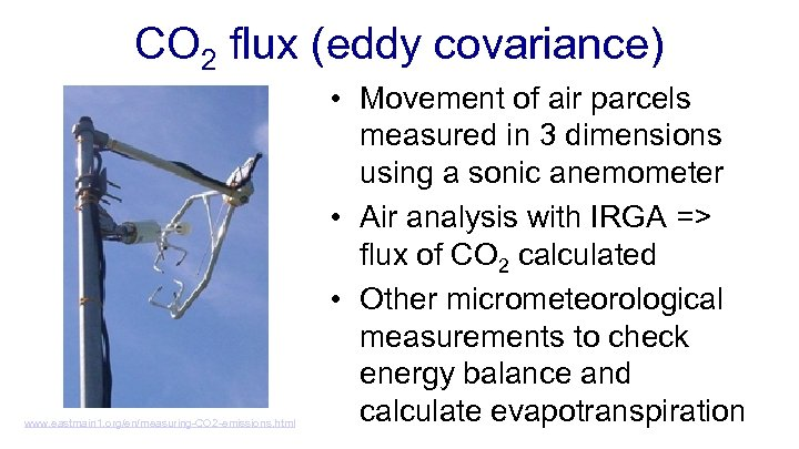 CO 2 flux (eddy covariance) www. eastmain 1. org/en/measuring-CO 2 -emissions. html • Movement