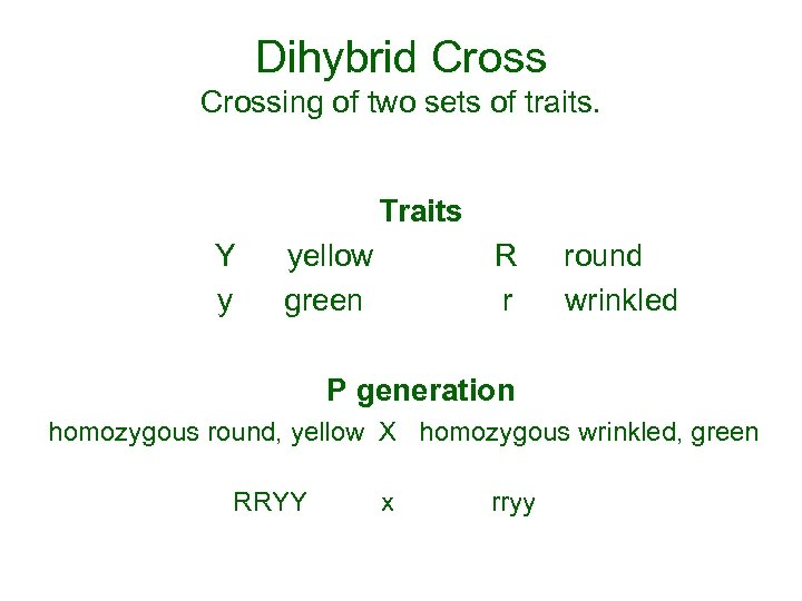 Dihybrid Crossing of two sets of traits. Traits Y yellow R round y green