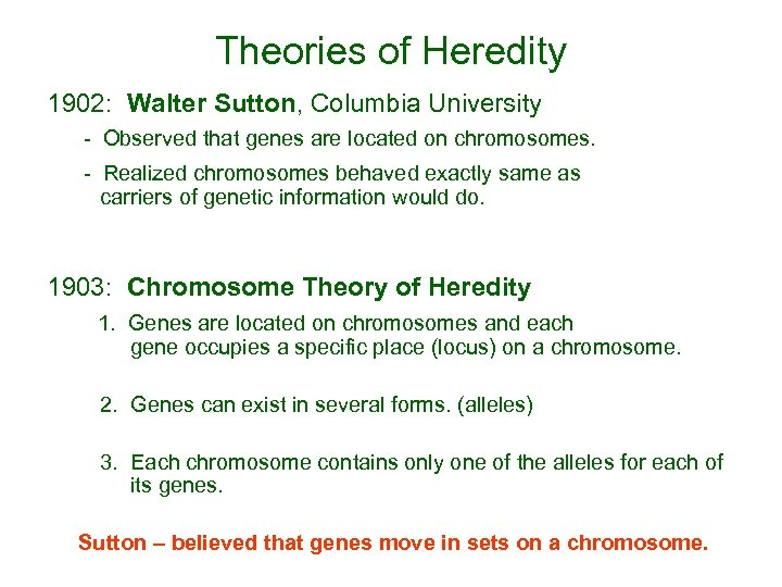 Theories of Heredity 1902: Walter Sutton, Columbia University - Observed that genes are located
