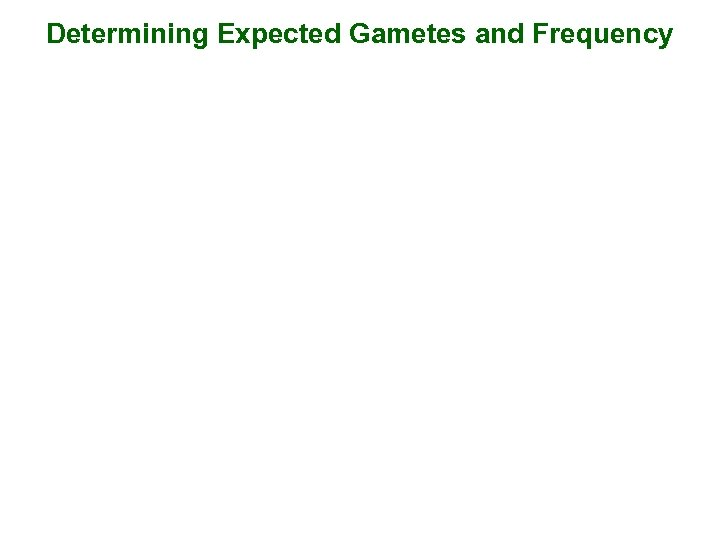 Determining Expected Gametes and Frequency