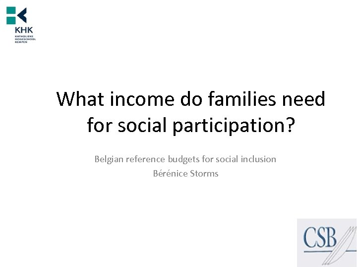 What income do families need for social participation? Belgian reference budgets for social inclusion