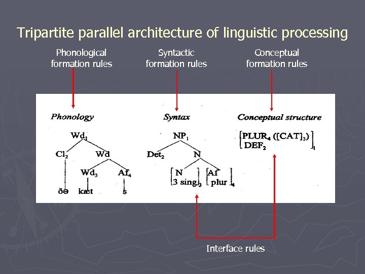 Tripartite parallel architecture of linguistic processing Phonological formation rules Syntactic formation rules Conceptual formation