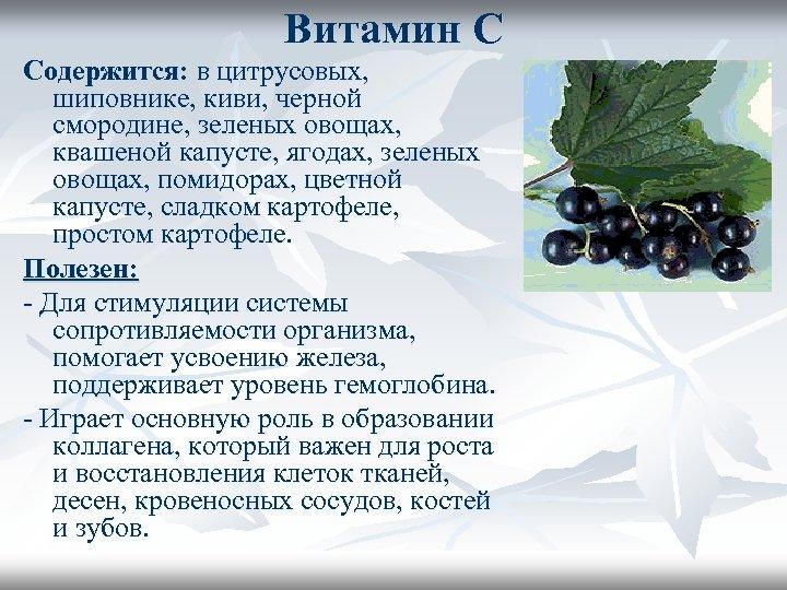 Витамин С Содержится: в цитрусовых, шиповнике, киви, черной смородине, зеленых овощах, квашеной капусте, ягодах,