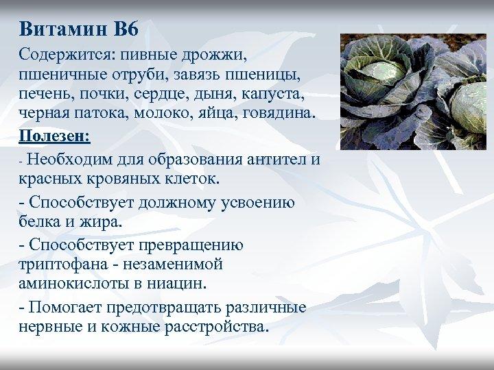 Витамин В 6 Содержится: пивные дрожжи, пшеничные отруби, завязь пшеницы, печень, почки, сердце, дыня,