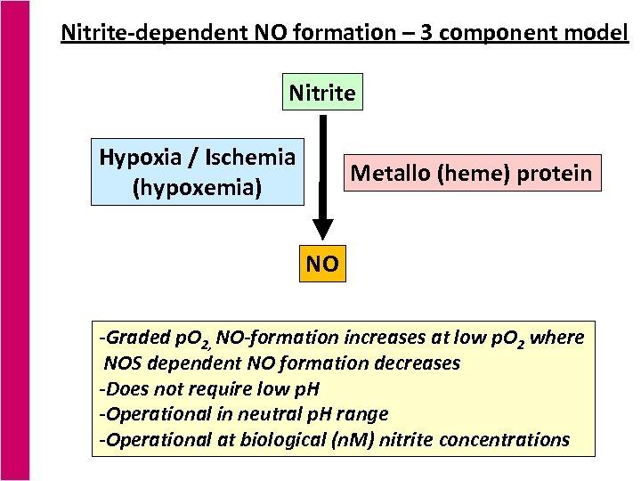 Nitrite-dependent NO formation – 3 component model Nitrite Hypoxia / Ischemia (hypoxemia) Metallo (heme)