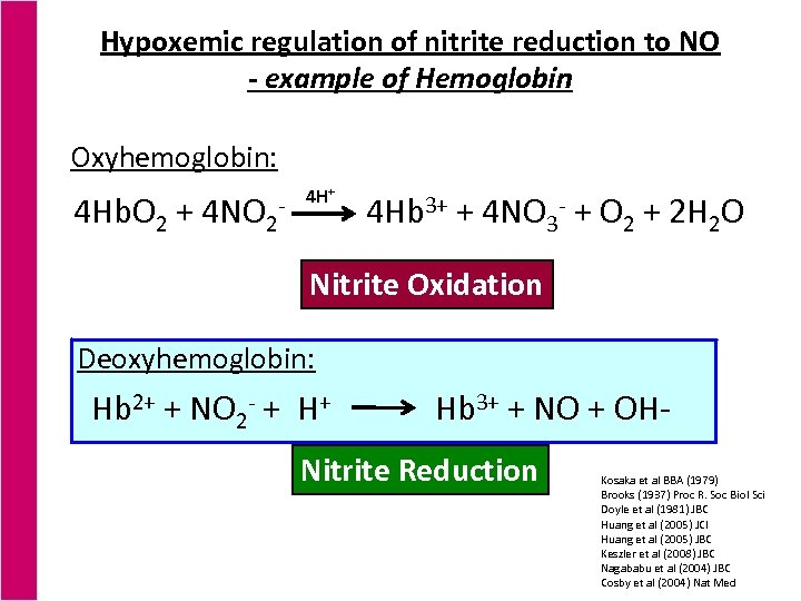 Hypoxemic regulation of nitrite reduction to NO - example of Hemoglobin Oxyhemoglobin: 4 Hb.