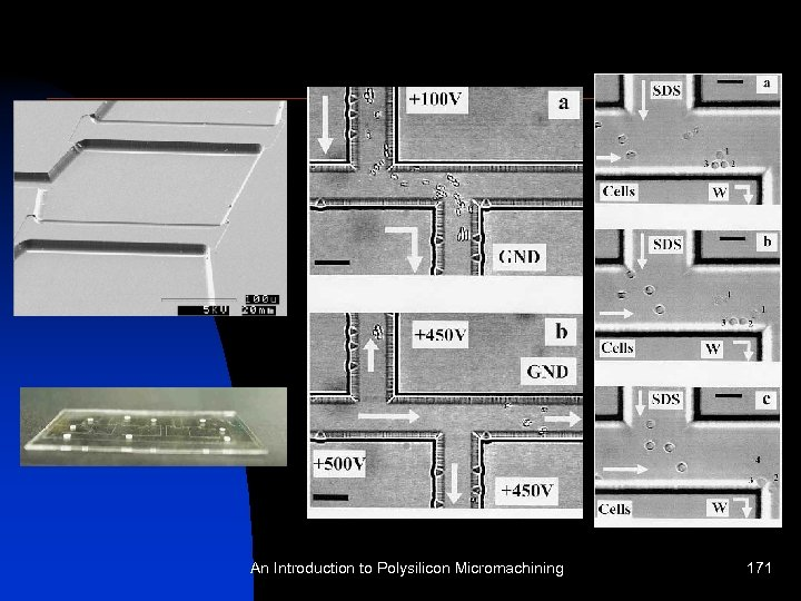 An Introduction to Polysilicon Micromachining 171