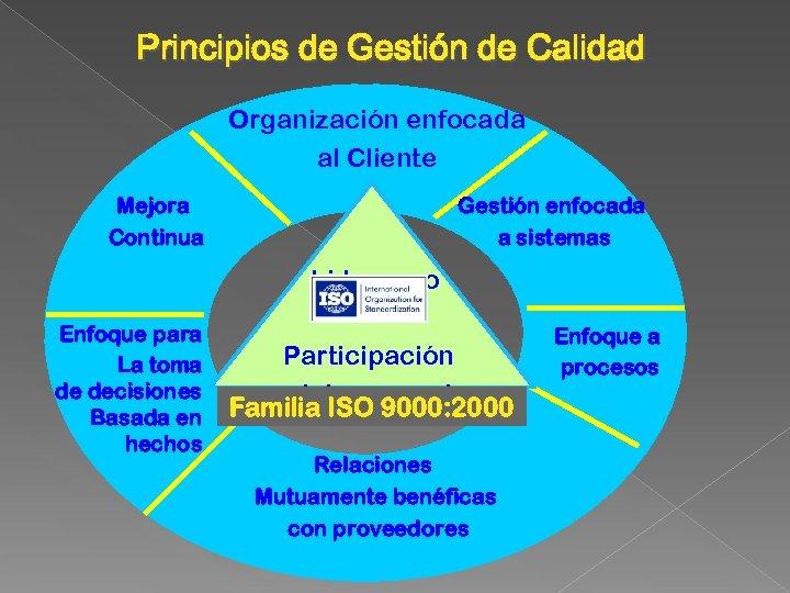 Principios de Gestión de Calidad Organización enfocada al Cliente Mejora Continua Gestión enfocada a