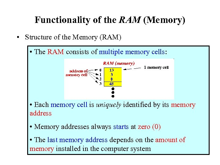 Functionality of the RAM (Memory) • Structure of the Memory (RAM) • The RAM