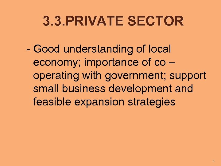 3. 3. PRIVATE SECTOR - Good understanding of local economy; importance of co –